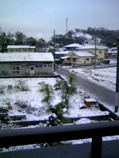初積雪です。
